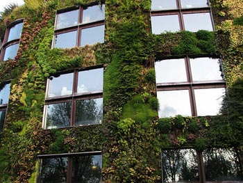 Living Wall at Museé du Quai Branley