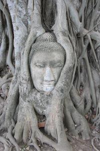 Buddha's Face in Tree Roots, Thailand